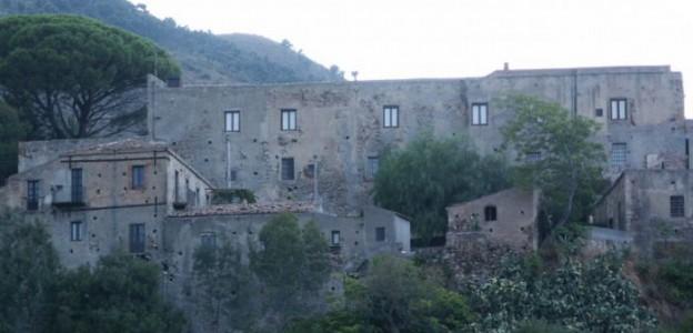 oliveri1